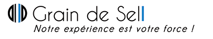 Agence Grain de Sell Paimpol Logo